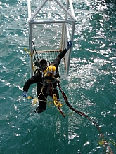GOM Diver in stage 2